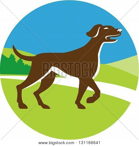 Illustration of an english pointer dog pointing up in a pointer stance with head up tail out and one foot slightly raised viewed from the side set inside circle with grass and trees in the background done in retro style.
