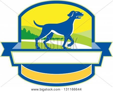 Illustration of an english pointer dog pointing up in a pointer stance with head up tail out and one foot slightly raised with grass and trees in the background viewed from the side set inside shield crest and banner ribbon in the bottom done in retro sty