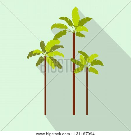 Three palm trees icon in flat style on a light blue background