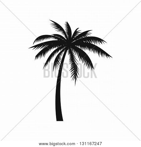 Coconut palm tree icon in simple style on a white background