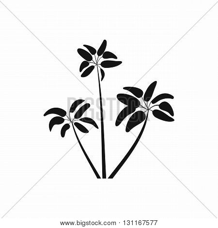 Three palms icon in simple style on a white background