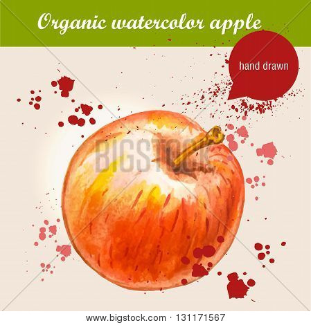 Vector watercolor hand drawn ripe red apple with watercolor drops. Organic food illustration.