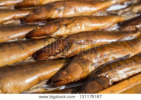 Pike perch smoked on the market background