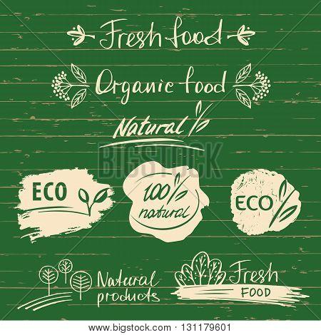 Set Logos, Labels With Natural Fresh Food Sketch Designs.organic