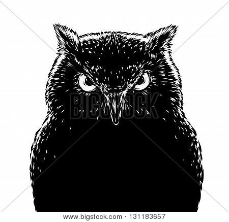 black and white engrave isolated evil owl bird