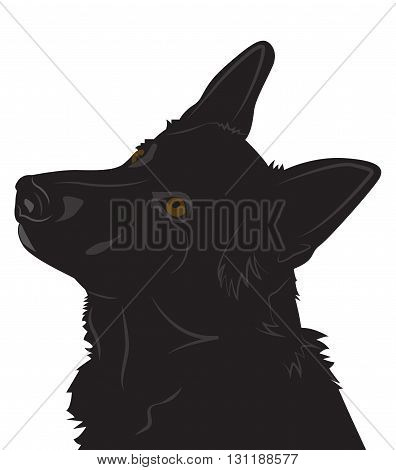 portrait of a dog. Silhouette of the head of the German Shepherd. Vector illustration