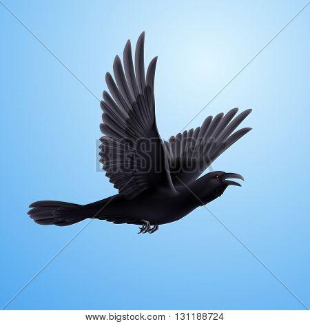 Illustration of flying black raven on blue sky background