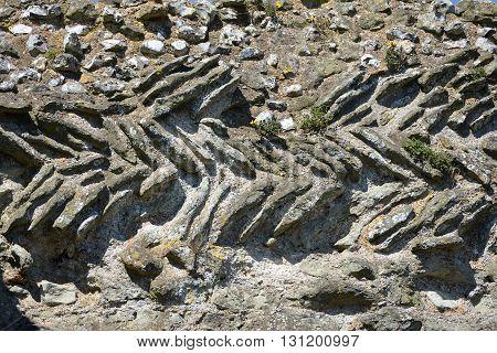 Norman herringbone wall made from roman bricks Pevensey Castle