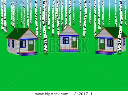 The houses in the birch forest. summer camp