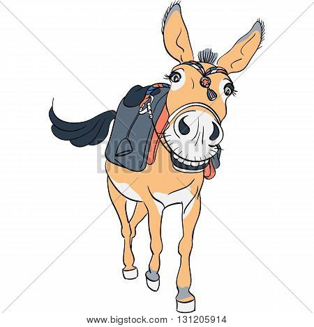 Vector funny donkey smilling with a saddle