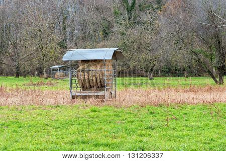 a shed with fodder for cows outdoor