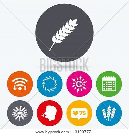 Wifi, like counter and calendar icons. Agricultural icons. Gluten free or No gluten signs. Wreath of Wheat corn symbol. Human talk, go to web.