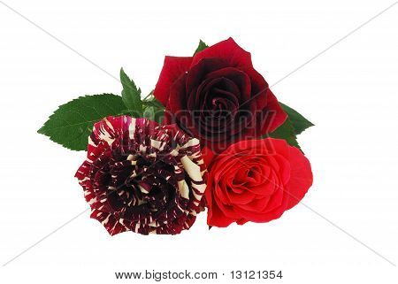 Valentine Day Bouquet - Tree Different Red Tint Roses
