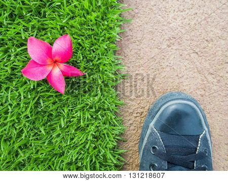 Top View of Feet on Cement Floor Between Pink Flower on Lawn Nature or Building Concept Nature or Man Made Concept Horizontal