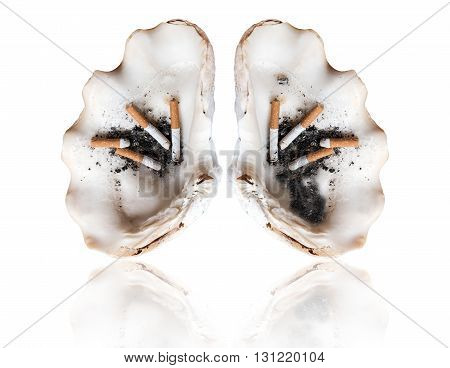 Abstract smoking human lung, world tobacco day, smoking kills concepts, isolated on white background