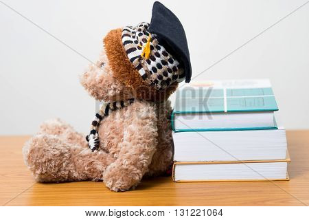 Teddy bear graduate lounge a book.back to school.education concept.