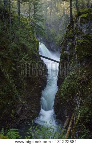 Qualicum River near Parksville Qualicum British Columbia Vancouver Island Canada Waterfall