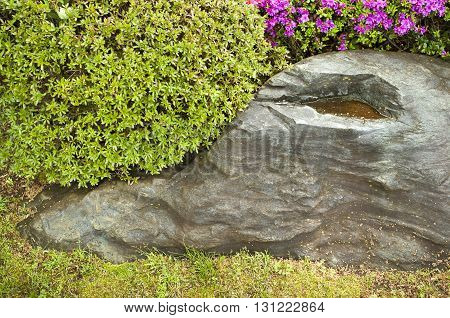 scenic zen garden fragment with green bushes and big stone