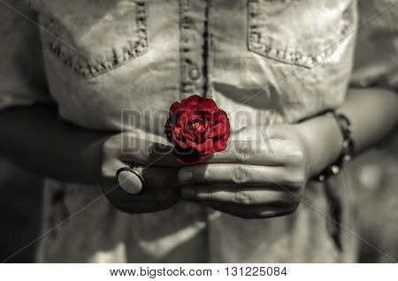 Girl in the park holding a rose flower.
