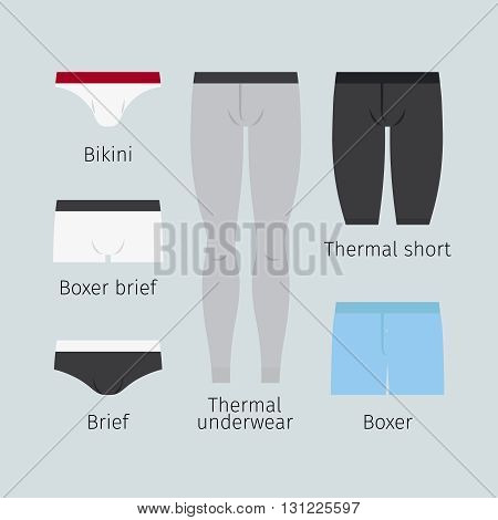 Man underwear. Various men underwear like boxer and brief, bikini and thermal underwear vector illustration