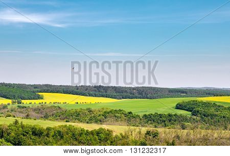 Spring Rural Landscape With Fields, Blue Sky And Bird