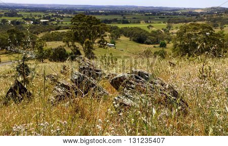 Hilltop view of the Barossa Valley South Australia