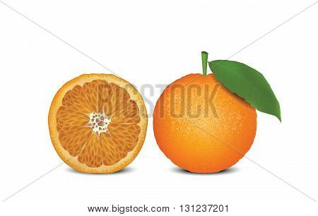Orange for your design, useful fruit, eco food