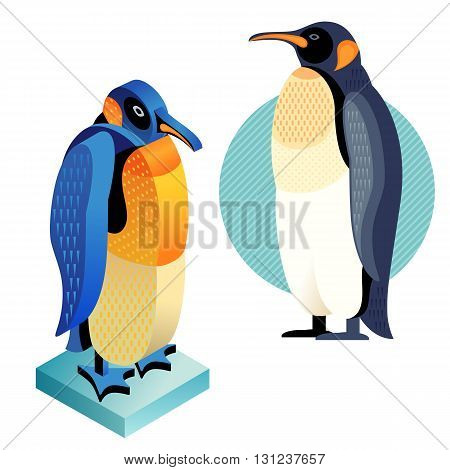 Unusual illustration of a set of birds. Vector bird flat icon penguin and its isometric view. Two design on isolated on white background.