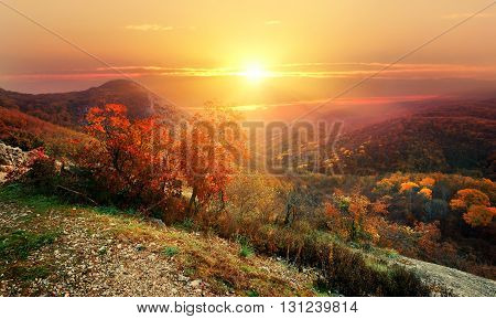 Bright sun over mountains in red autumn