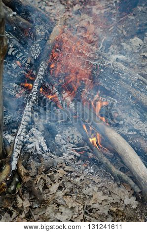 Campfire burning open fire and smoke on picnic