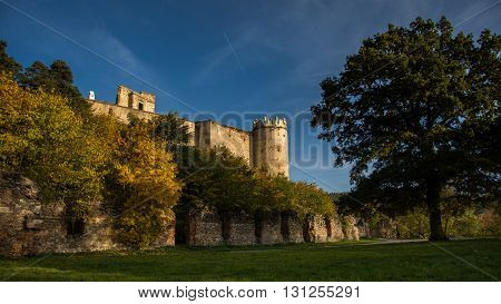Old castle with tree and nice weather