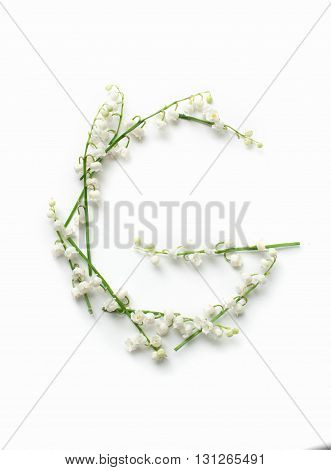 English alphabet from flower letters. creative decorative letter G.