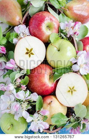 Fruits in spring composition with flower, view from above