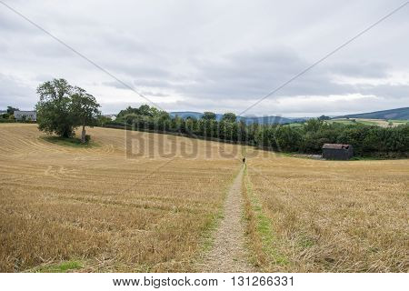 English ountryside landscape with harvested field with old barn