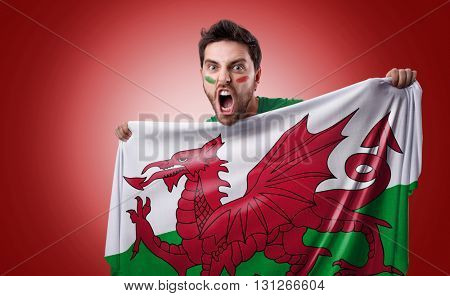Fan holding the flag of Wales