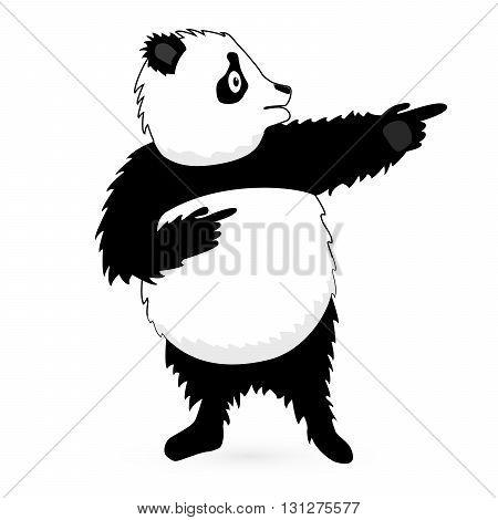 Vector Panda Bear standing on white background