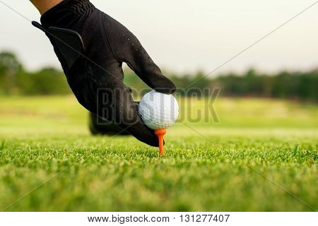 Hand hold golf ball with tee on course close-up