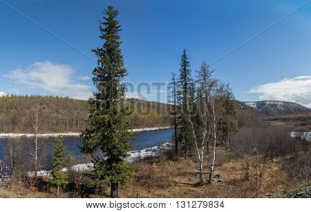 Spring landscape on a clear day in South Yakutia Russia