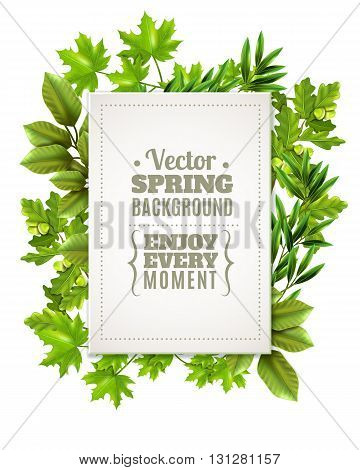 Decorative green frame with spring leaves and branches of deciduous trees and white rectangle with text in foreground vector illustration