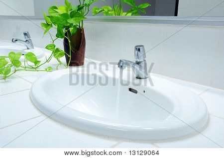 handbasin and vase in toilet