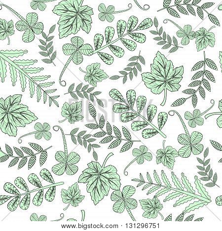 Hand drawn zentangle doodle pattern for adult coloring books in vector.Forest leaves background for wedding invitations cards branding logo label.