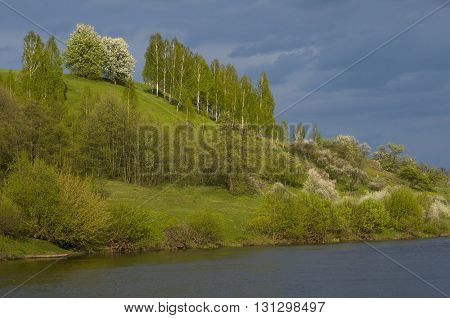 Sunlit hill with spring trees against thunder-cloud background. Water is in foreground.