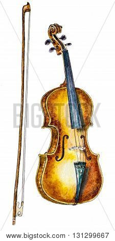 watercolor violin and a bow on white. hand painted illustration