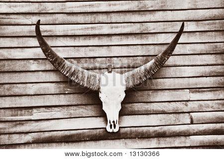 Wild west: vintage skull on the board