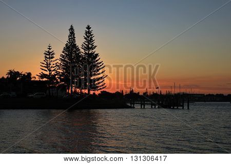 Silhouettes of trees at sunset. Evening scene in Port Macquarie Australia.