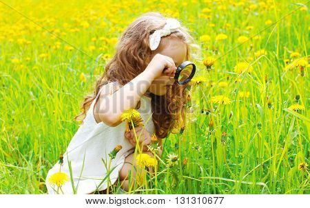 Child Looking Through Magnifying Glass On Yellow Dandelion Flowers
