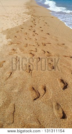 Footsteps in the wet sand at the beach