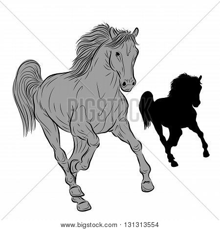 Black horse silhouette isolated vector illustration gray