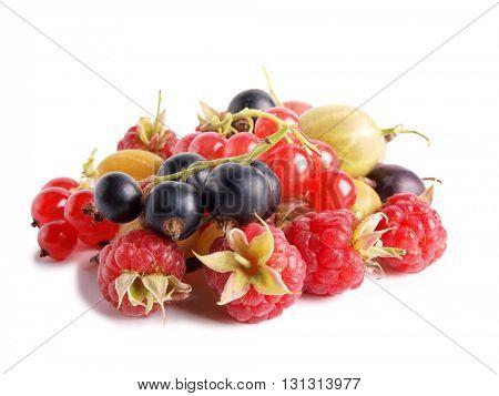 Garden fresh berries on a white background