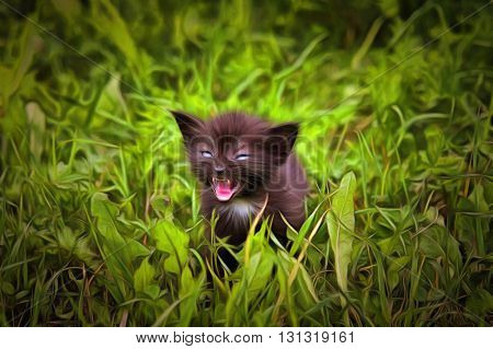Fretting kitten in the grass - mixed media - digitally altered